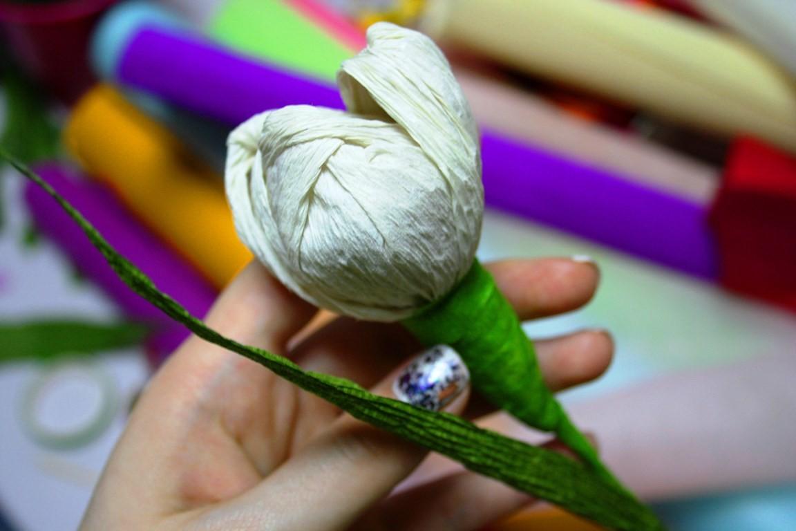 тюльпаны из бумаги мастер класс